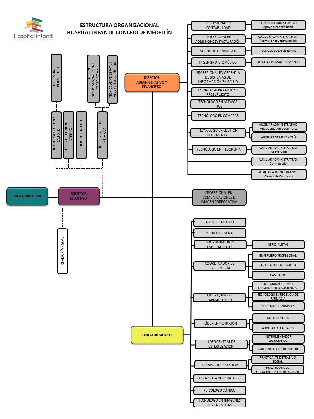 ESTRUCTURA ORGANIZACIONAL HICM - copiaversión web